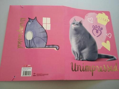 Teczka na rysunki A4 z gumką Pets Kot