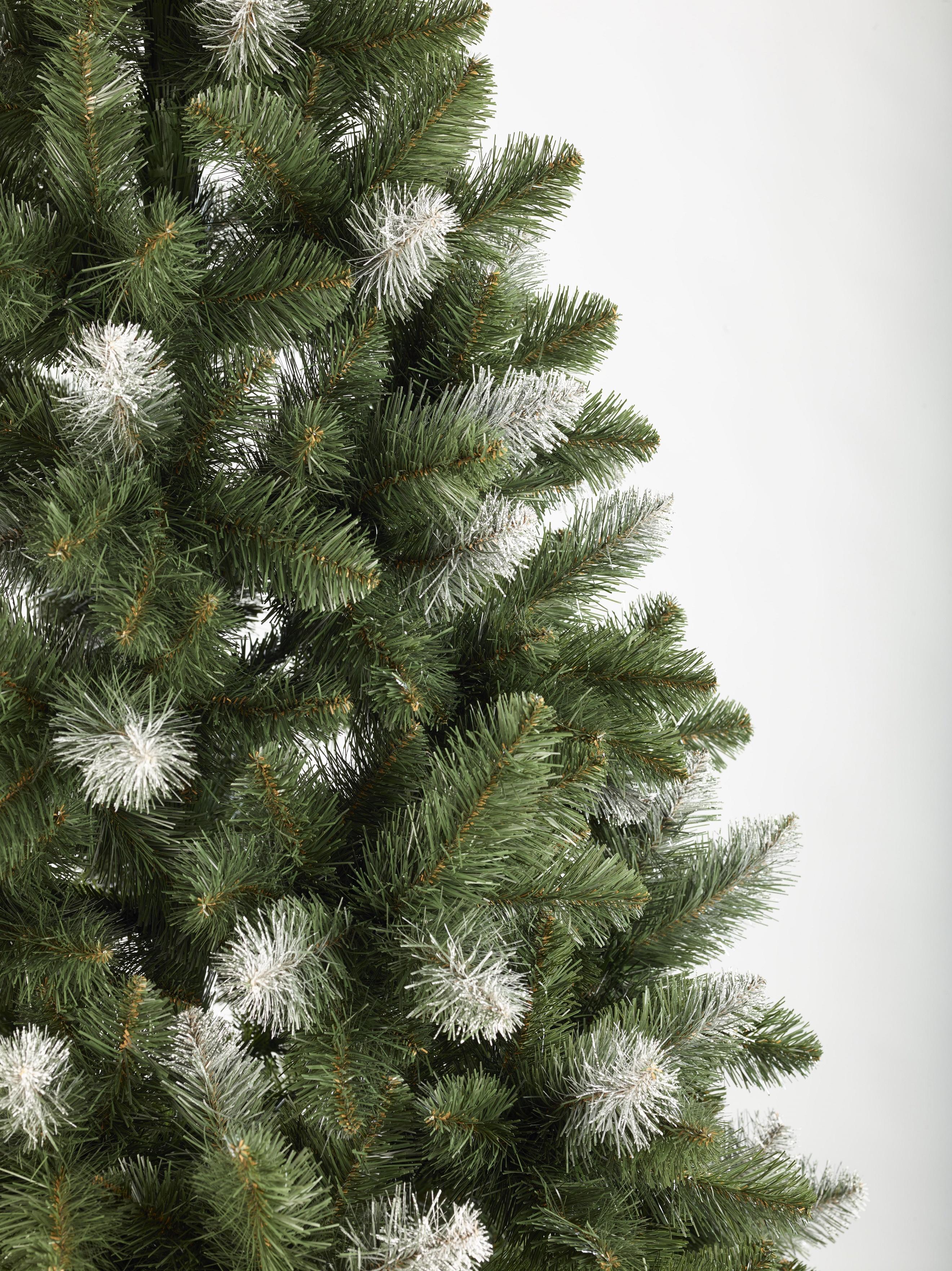 weihnachtsbaum tannenbaum tanne pola 120 150 180 220 250. Black Bedroom Furniture Sets. Home Design Ideas